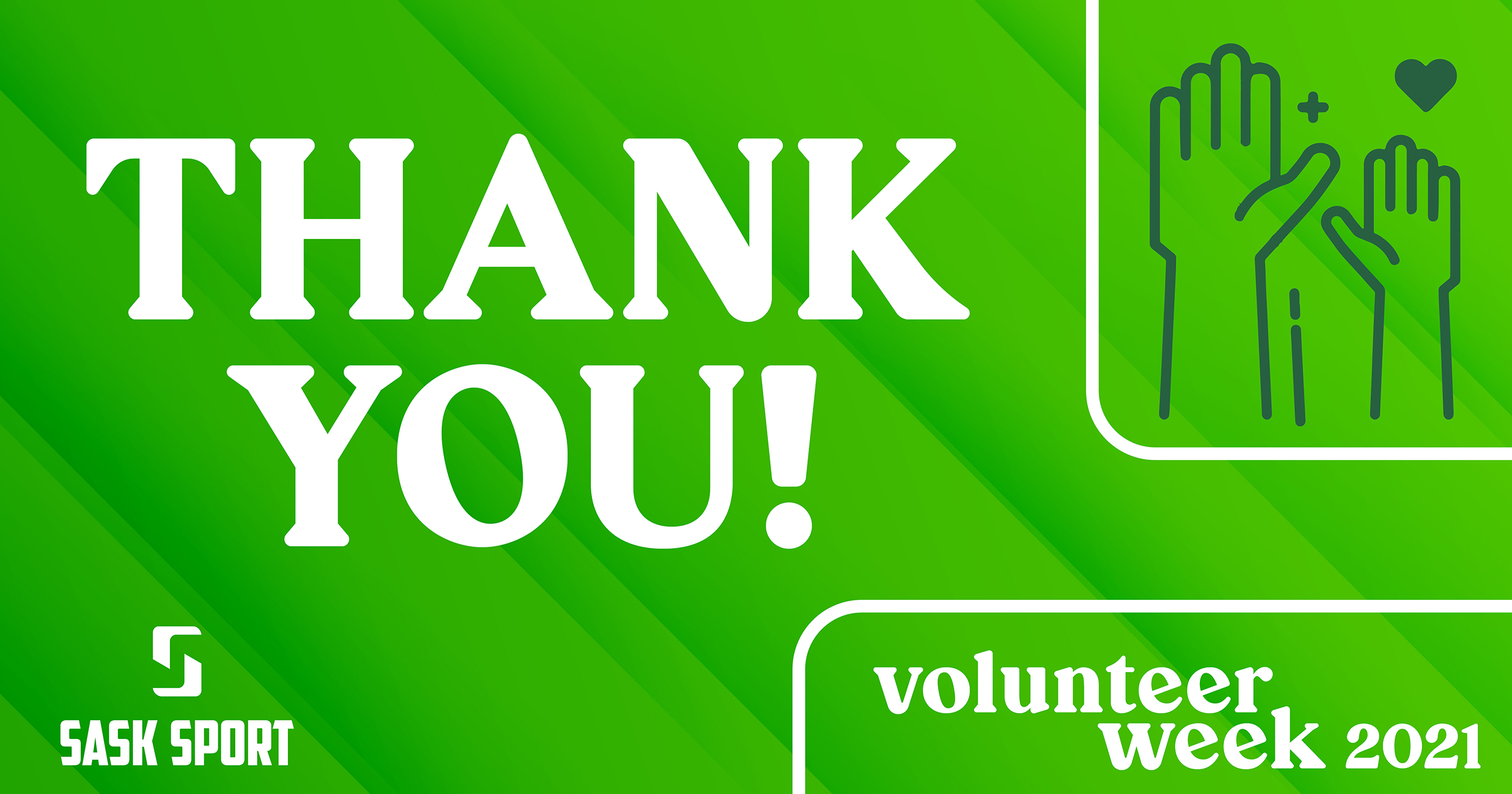 Volunteers: a special thank you